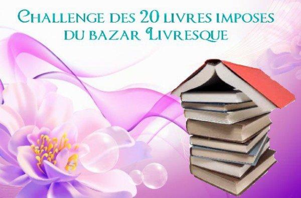 Challenge du Bazar Livresque