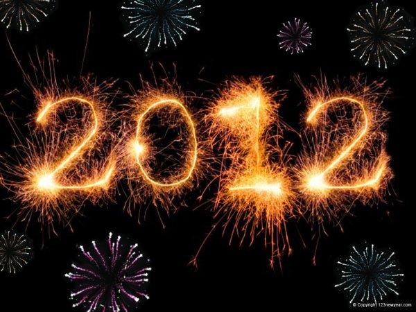 Bilan de l'année 2012