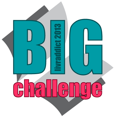 Big Challenge 2013