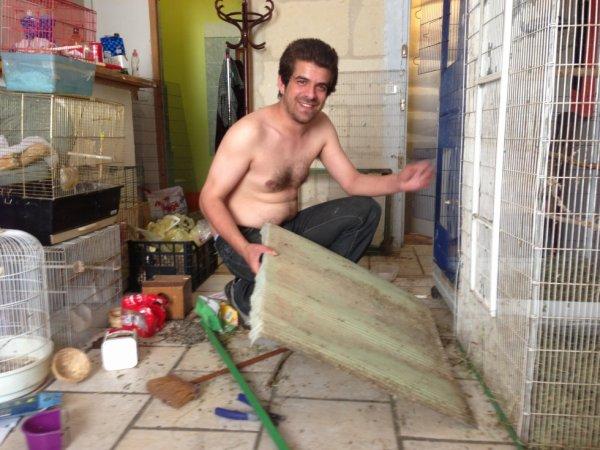 Une voliere faite maison pour jeunes et canaris pour quand la repro cessera