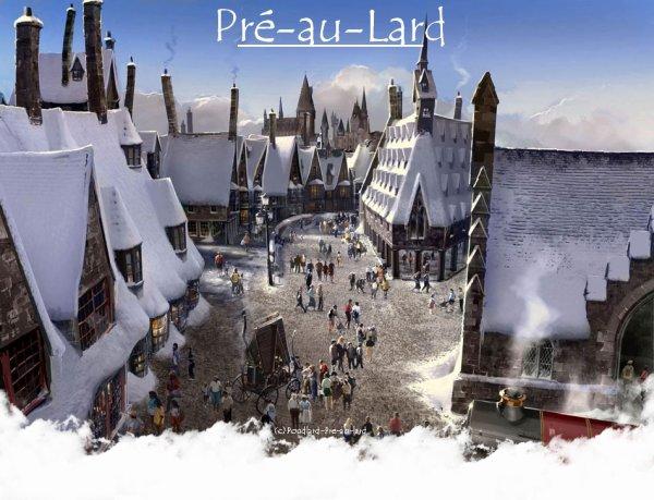Voici Pré-au-Lard, je vous ai mis un petit aperçut du village et un plan, comme ça vous pourez vite retrouvez votre chemin.