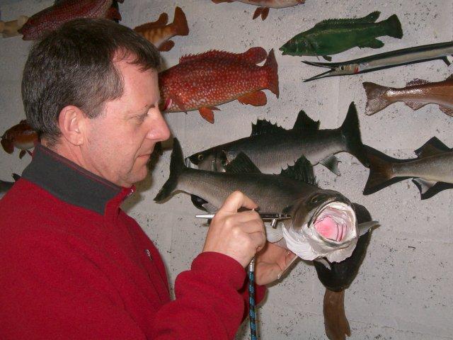 poissons naturalisés