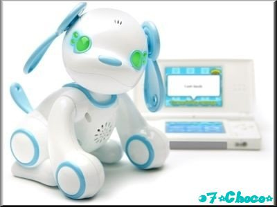 LE ROBOCHIOT ~ TEST