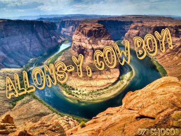 **COW BOY LAND**
