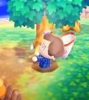 Photo de Animal-Crossing-Image