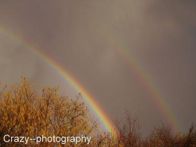 Rainbow... ♥