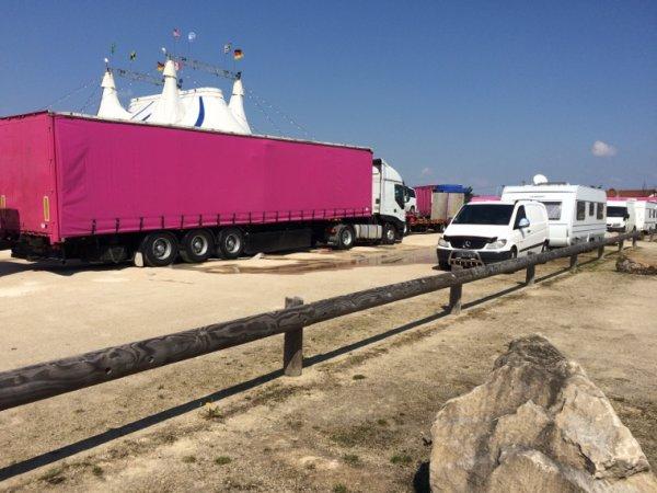 ⭐️ Cirque de St petersbourg ! ⭐️