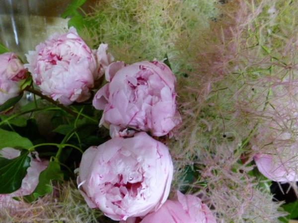 Et oui encore des pivoines!!!!!!,avec Une Fleur.