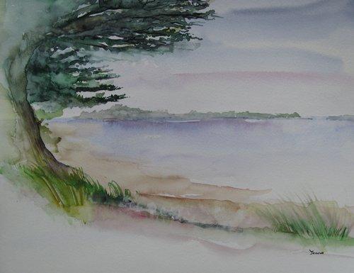Golfe du Morbihan : Pointe du Duer