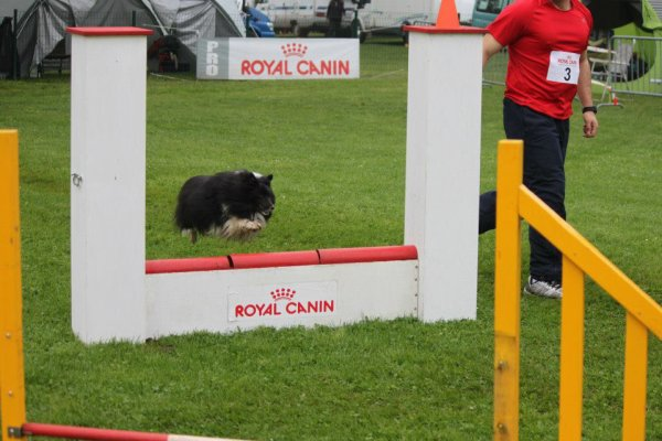 Agility this year - 8 years strong !!!!