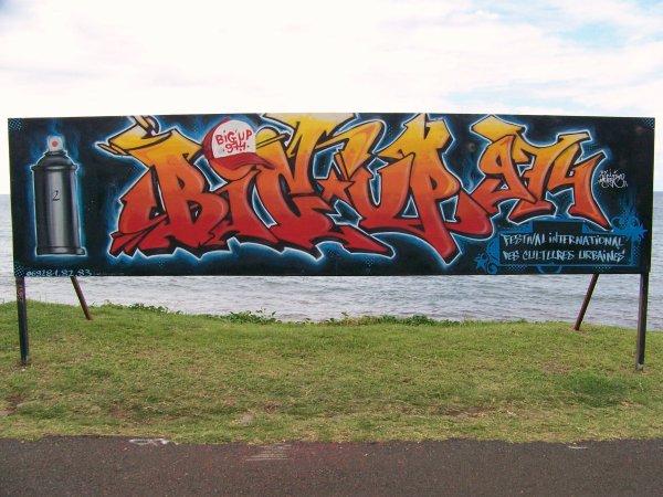 panneau pour art littoral et le festival bigup974 by d'cleektwo