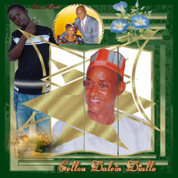 Le Président  Cellou Dalein Diallo  !!!