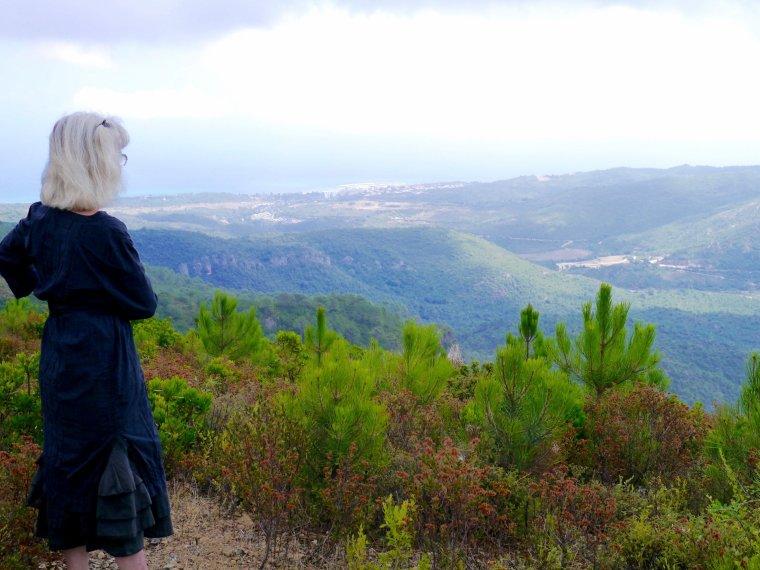 Pistes dans la forêt de Tova