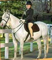 Barq et kristie ma passion le cheval - Grand galop le cheval volant ...