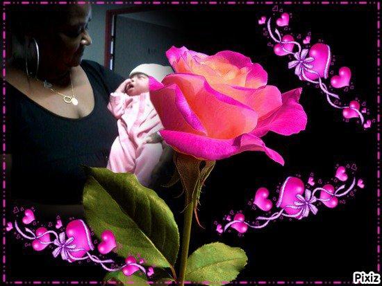 Montage cadeau de mon amie rose des iles ♥