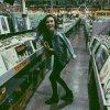 """""""Je suis trop occupé à être tien comme pour tomber amoureux de quelqu'un d'autre"""" Arctic Monkeys"""