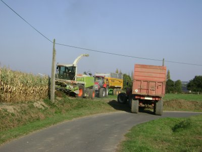 chantier d ensilage a gommenec h (22)
