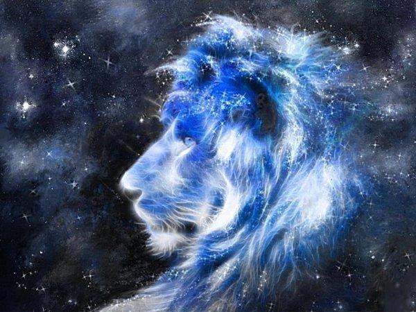 djlicorne&lion
