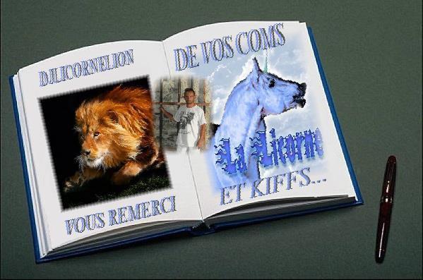 le livre dedjlicorne&lion