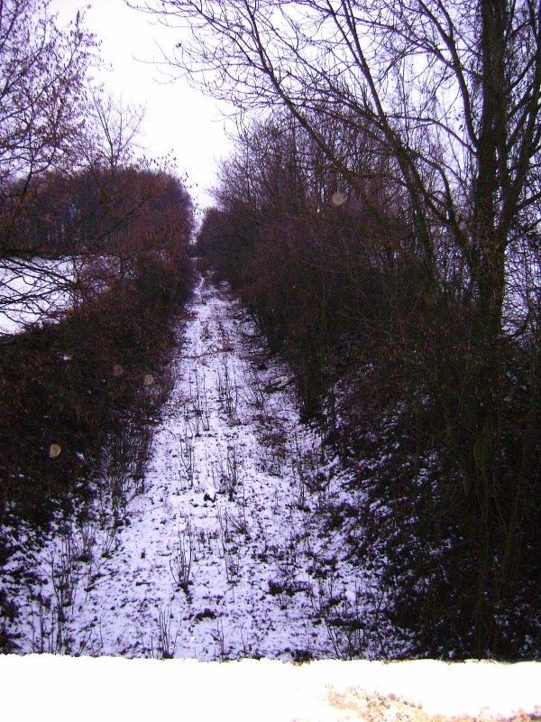 Tracé de l'ancienne voie de chemin de fer de Nucourt ( Ligne, Chars a Magny en Vexin ) mise en service 1871 fermée en 1987