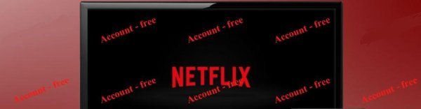 The netflix accounts program