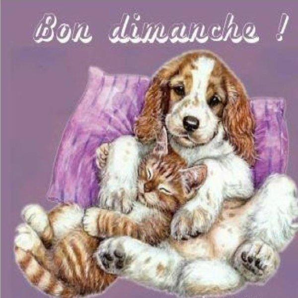 bonjour!!!!!!!!!!!!!!!!!!!!!!!!!!
