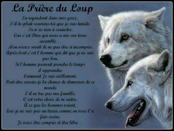 Prière. Du.loup
