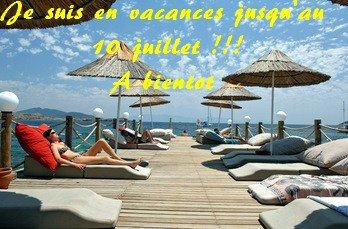 Vacances !!!  Départ pour Bodrum ...