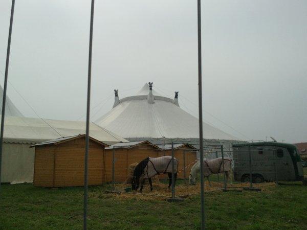 14e festival international du cirque du Val d'oise à Domont (95)