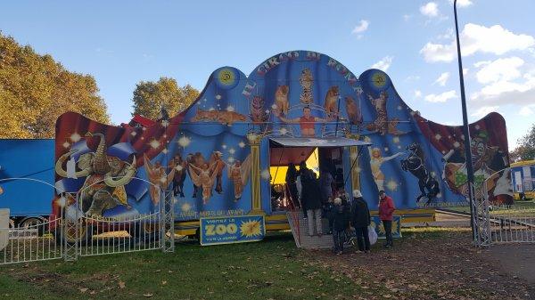 Le cirque de Rome à Argenteuil (95) du 21 octobre au 06 novembre 2016 (Présentation)