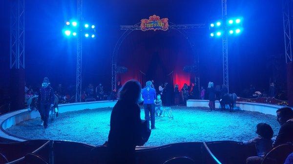 Le cirque de Rome à Argenteuil (95) du 21 octobre au 06 novembre 2016 (Sous le chapiteau)