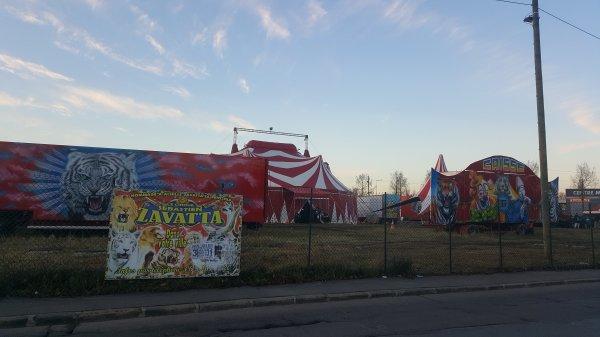 Le cirque Sébastien Zavatta à Aulnay-sous-bois (93) du 3 au 31 décembre 2016 (Affichage)