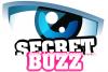 Le-buzz-secret
