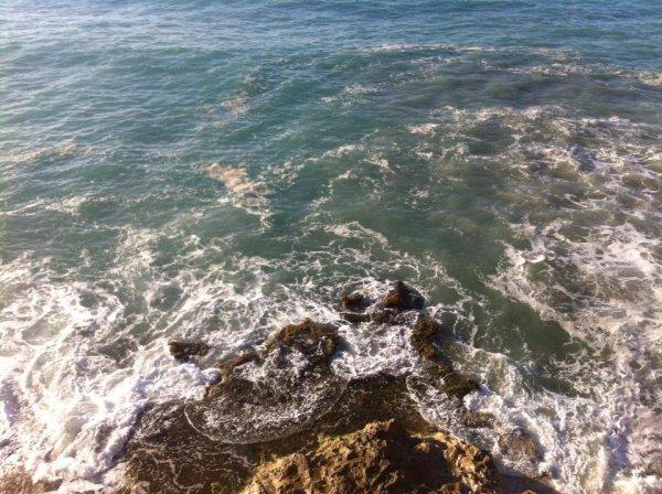 la plage algerien