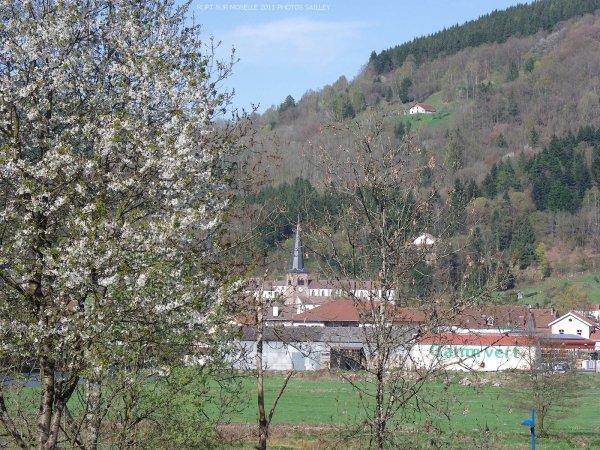 Le printemps à rupt sur moselle