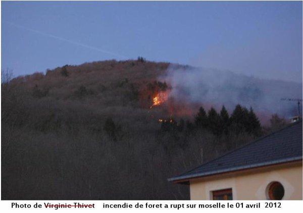 Photos du feu de foret dans les vosges à RUPT SUR MOSELLE
