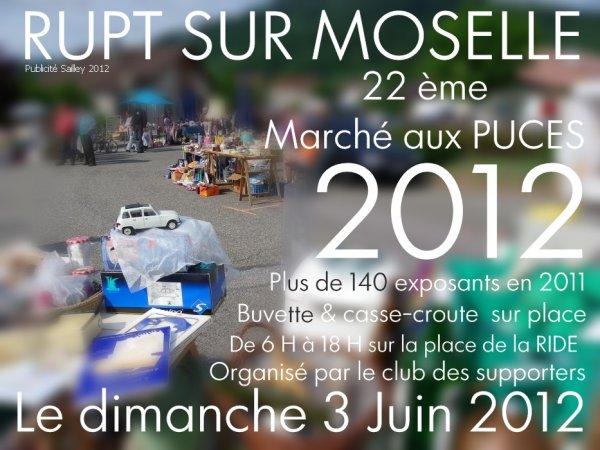 Marche aux puces 2012 à RUPT sur Moselle