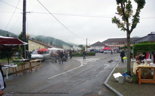 22 ème Marché aux puces 2012