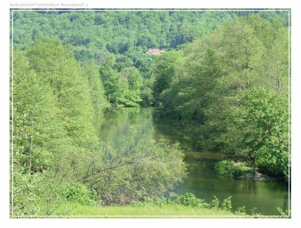 La moselle sur la commune de RUPT sur Moselle ( 88 )