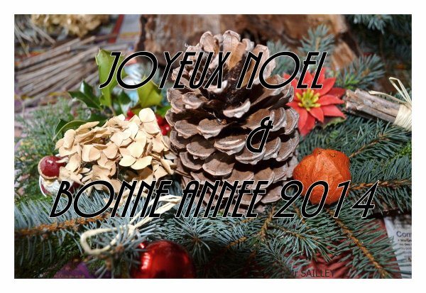 Toute notre équipe vous souhaite de Bonnes et heureuses fêtes !