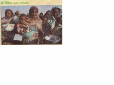 Famine au Soudan, Manuel d'Histoire-Géographie-Education Civique 2nde Bac Pro CASTEILLA