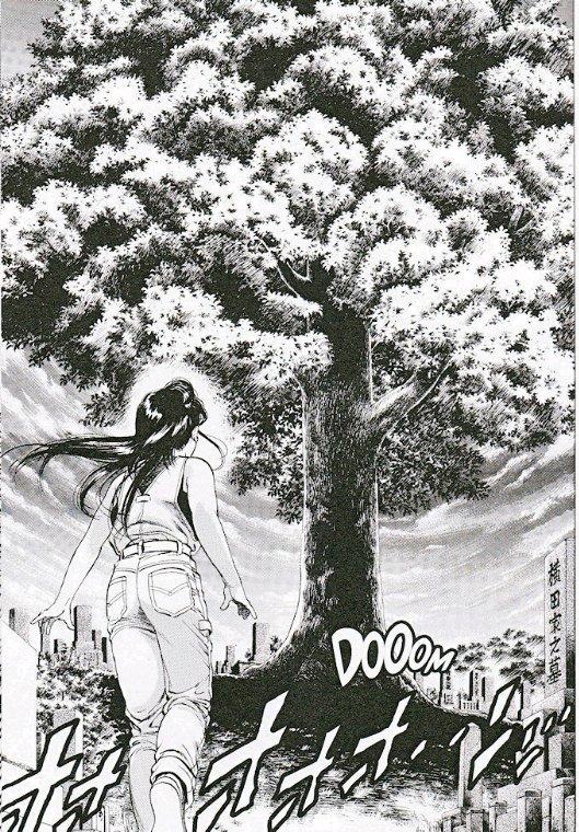 Chapitre 10 : Cerisiers ?