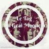 Le Tag Du Geai Moqueur (Hunger Games)