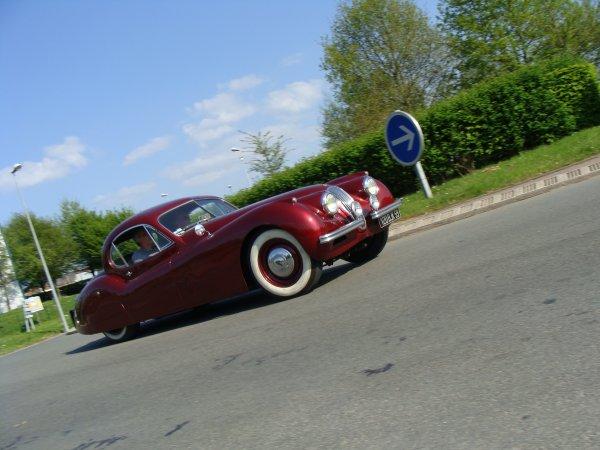 Jaguar XK 120 1951