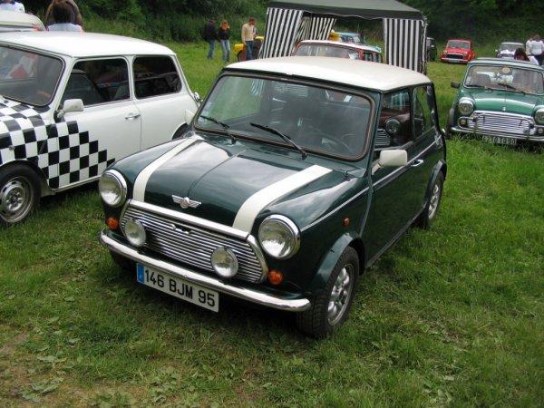 Mini Cooper 1300i 1992