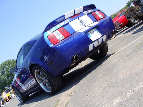 Shelby GT 500 2008