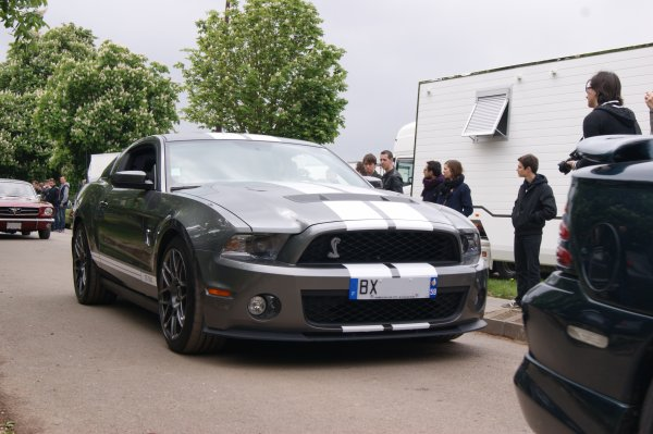 Shelby GT 500 2010