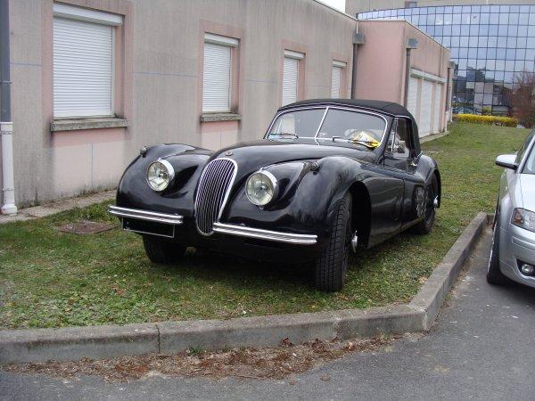 Jaguar XK 120 SE 1953