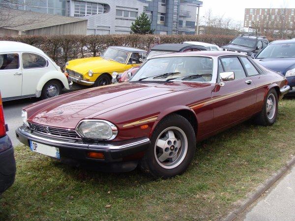 Jaguar XJ-S V12 HE 1981