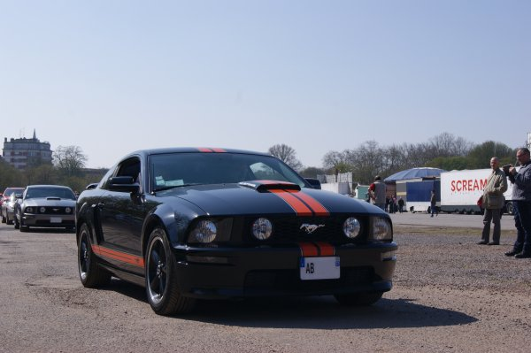 Ford Mustang GT California Special 2006